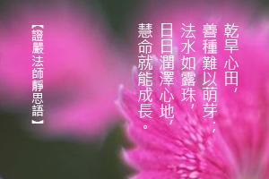 http://news.tzuchi.net/QuietThink.nsf/4FC712AFFFEEF5DB4825680000120D09/37574D88BDC5DE28482580D70000DA0A/$FILE/5142.jpg