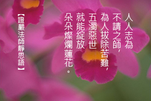 http://news.tzuchi.net/QuietThink.nsf/4FC712AFFFEEF5DB4825680000120D09/3B1613834C3F092C482580EA00001DE8/$FILE/5215.jpg