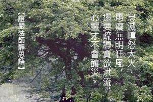 http://news.tzuchi.net/QuietThink.nsf/4FC712AFFFEEF5DB4825680000120D09/4DA3838746748FA8482580F900014A95/$FILE/5267.jpg