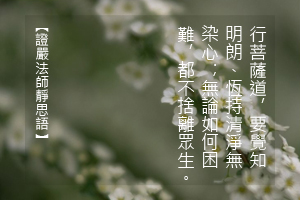 http://news.tzuchi.net/QuietThink.nsf/4FC712AFFFEEF5DB4825680000120D09/4E489BF93C539B0C482580C3000190FE/$FILE/5053.jpg
