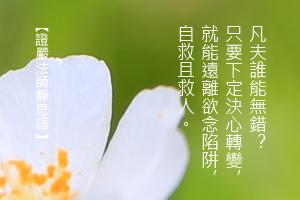 http://news.tzuchi.net/QuietThink.nsf/4FC712AFFFEEF5DB4825680000120D09/561A3A32CC75EEB7482580C10001E615/$FILE/5024.jpg