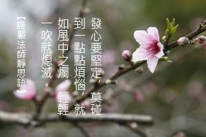 http://news.tzuchi.net/QuietThink.nsf/4FC712AFFFEEF5DB4825680000120D09/6DFC2BC3CDFC439C482580BB0001BB75/$FILE/4959.jpg