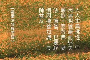 http://news.tzuchi.net/QuietThink.nsf/4FC712AFFFEEF5DB4825680000120D09/74F9E1BEA836EC77482580BC000099D8/$FILE/4982.jpg
