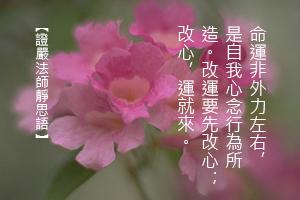 http://news.tzuchi.net/QuietThink.nsf/4FC712AFFFEEF5DB4825680000120D09/7DBE0DA220AB5B37482580D1000100B2/$FILE/5120.jpg