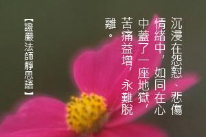 http://news.tzuchi.net/QuietThink.nsf/4FC712AFFFEEF5DB4825680000120D09/7E9CF78C1BEF9CAB482580C2000170B5/$FILE/5035.jpg