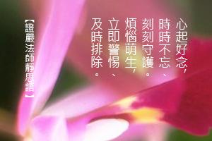 http://news.tzuchi.net/QuietThink.nsf/4FC712AFFFEEF5DB4825680000120D09/81153E185BF74E71482580E10083D56E/$FILE/5192.jpg
