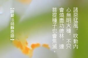 http://news.tzuchi.net/QuietThink.nsf/4FC712AFFFEEF5DB4825680000120D09/863BB8D4DF37B207482580C10001DEDA/$FILE/5023.jpg