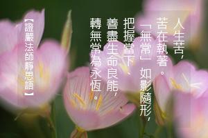 http://news.tzuchi.net/QuietThink.nsf/4FC712AFFFEEF5DB4825680000120D09/9F6992506B343EC2482580D100008D73/$FILE/5106.jpg