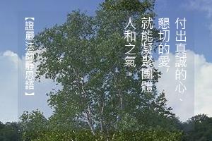 http://news.tzuchi.net/QuietThink.nsf/4FC712AFFFEEF5DB4825680000120D09/A0052594622885A7482580F900019CAF/$FILE/5277.jpg