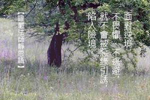 http://news.tzuchi.net/QuietThink.nsf/4FC712AFFFEEF5DB4825680000120D09/A656E66BA9E20747482580F9000161F1/$FILE/5270.jpg