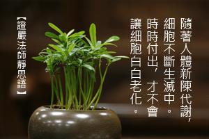 http://news.tzuchi.net/QuietThink.nsf/4FC712AFFFEEF5DB4825680000120D09/B47C51641E989525482580BB000198E3/$FILE/4955.jpg