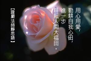 http://news.tzuchi.net/QuietThink.nsf/4FC712AFFFEEF5DB4825680000120D09/B6BC17E5F82C6F60482580F40000FB7B/$FILE/5243.jpg