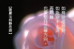 http://news.tzuchi.net/QuietThink.nsf/4FC712AFFFEEF5DB4825680000120D09/B8FA27C091191A16482580ED00011935/$FILE/5240.jpg