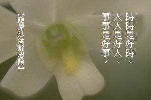 http://news.tzuchi.net/QuietThink.nsf/4FC712AFFFEEF5DB4825680000120D09/C466425E28E363EB482580C300016FB3/$FILE/5049.jpg