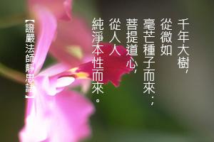 http://news.tzuchi.net/QuietThink.nsf/4FC712AFFFEEF5DB4825680000120D09/D58BF0FAE6141430482580E2000007B0/$FILE/5193.jpg