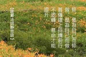http://news.tzuchi.net/QuietThink.nsf/4FC712AFFFEEF5DB4825680000120D09/E604735FA3DE1903482580BC0000BD8F/$FILE/4986.jpg