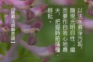 http://news.tzuchi.net/QuietThink.nsf/4FC712AFFFEEF5DB4825680000120D09/E6DC486D67D066E8482580C30001D95C/$FILE/5054.jpg