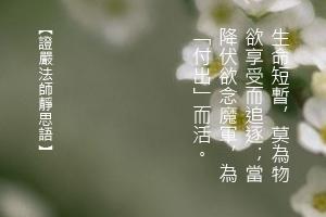http://news.tzuchi.net/QuietThink.nsf/4FC712AFFFEEF5DB4825680000120D09/F0F2BE7E3F375DC3482580C30001806E/$FILE/5051.jpg