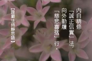 http://news.tzuchi.net/QuietThink.nsf/4FC712AFFFEEF5DB4825680000120D09/F4E01C4784C9345C482580DE000103E7/$FILE/5167.jpg